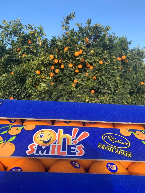 """真心""""橙""""意,为你""""橙""""现 西班牙OhSmiles笑脸橙即将登陆中国市场"""